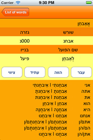 iPhone Hebrew Verbs Application